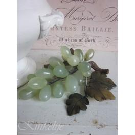 Oude druiventros
